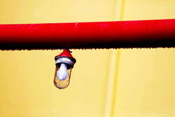 Bulb On Pipe photo