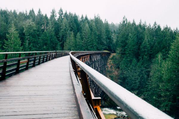 Bridge to the Nature photo