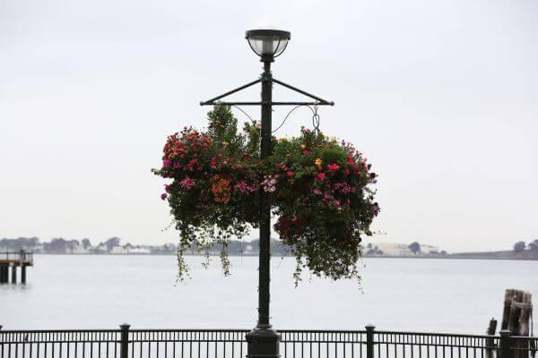 Flowery Street Lamp photo