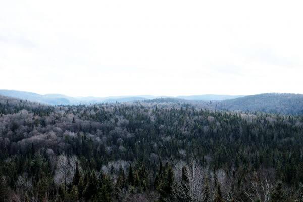 National Park Trip photo