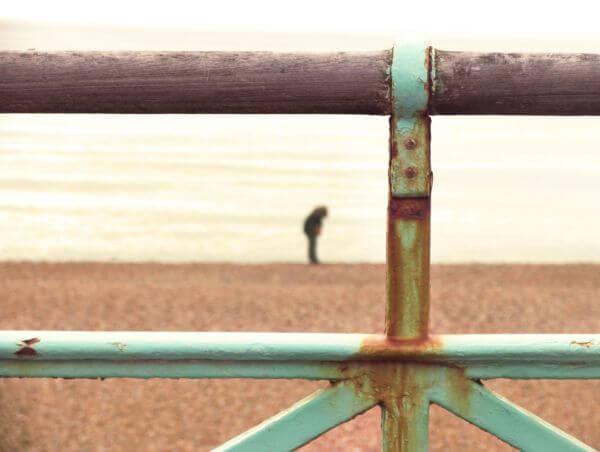 Fence Portrait photo