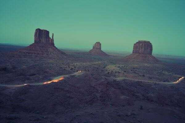 Desert Life photo