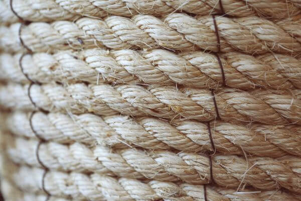 The rope photo