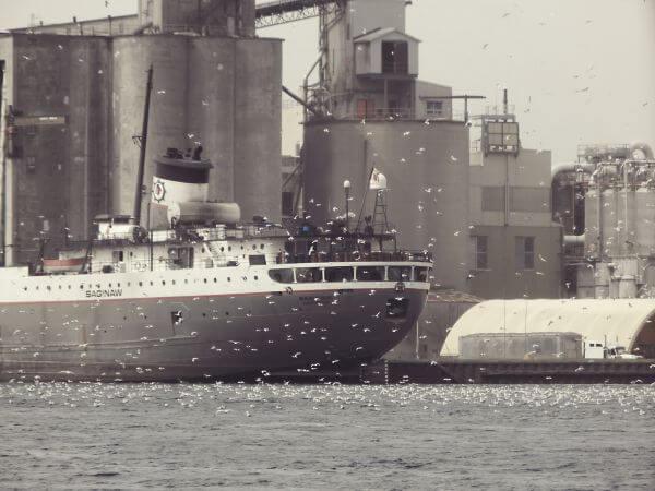Cargo photo