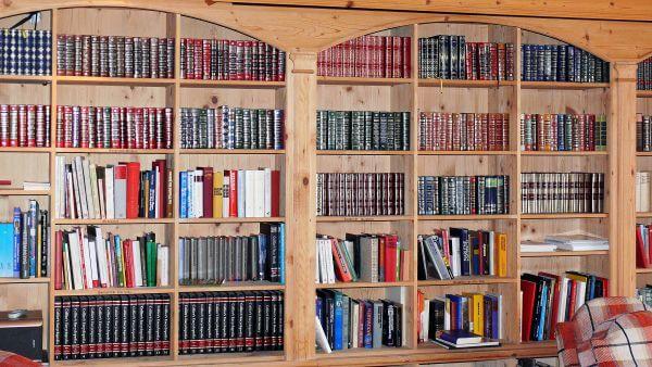 Book shelves photo