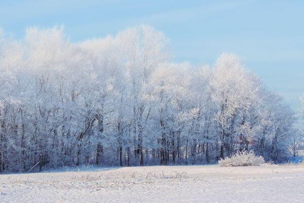 Cold photo