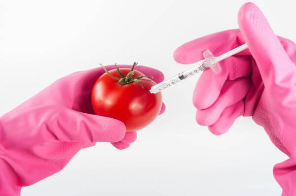 Biotechnology photo