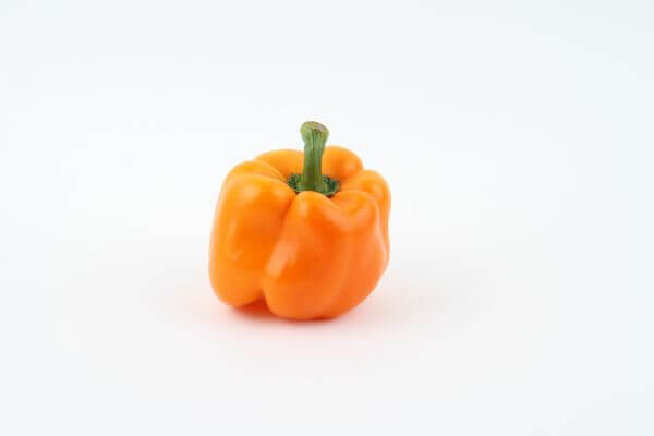 Bell pepper photo