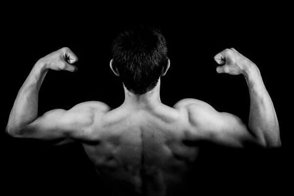 Biceps photo