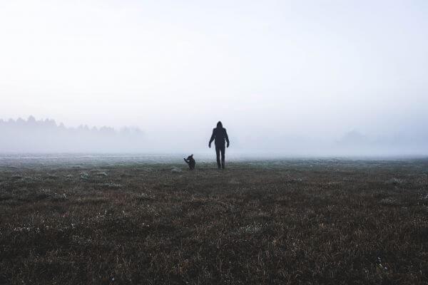Fog photo