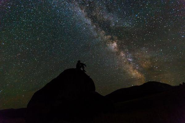 Cosmos photo