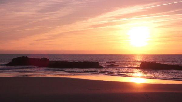 Beach  sea  ocean video