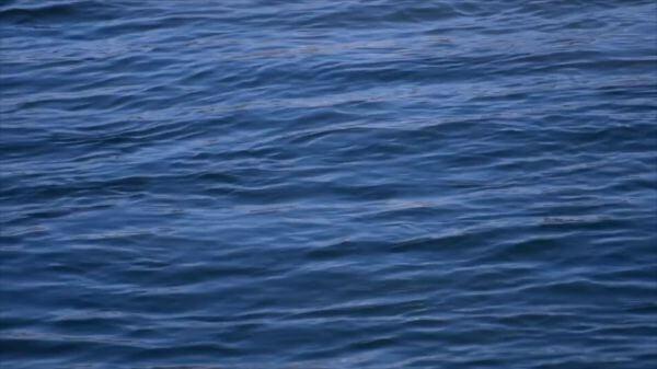 Waves  lake  water video
