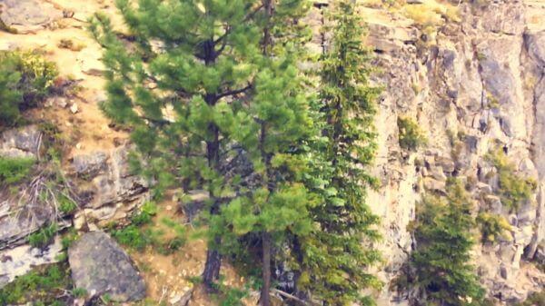 Waterfall  stream  drop video