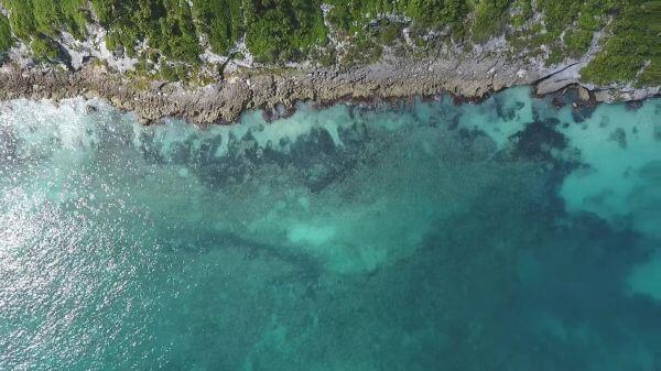 Beach  shore  aerial view video