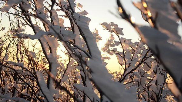 Sunrise  sun  snow video