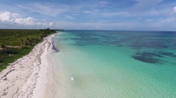 Sea  beach  ocean video