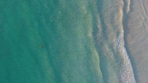 Beach  swimming  shore video