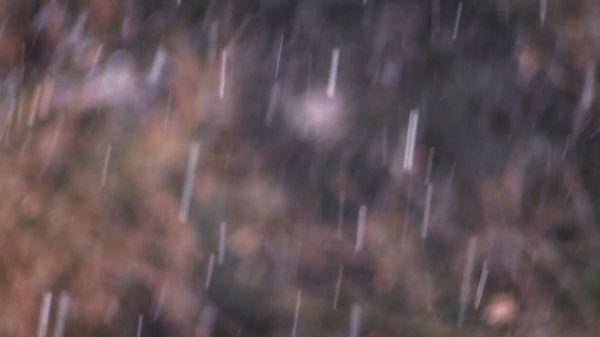 Snowfall  snow  snowflakes video