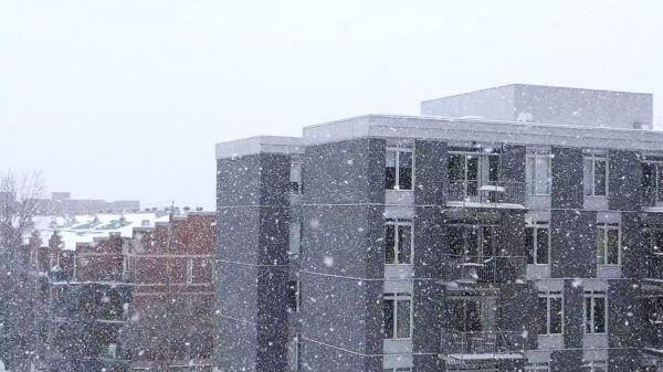 Snowfall  snow  winter video