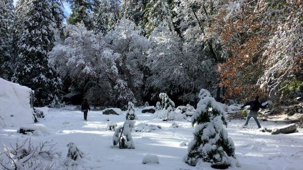 Snowball  snow  winter video