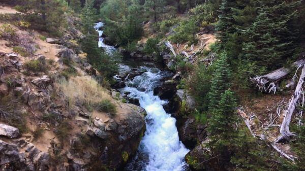 Stream  creek  cascade video