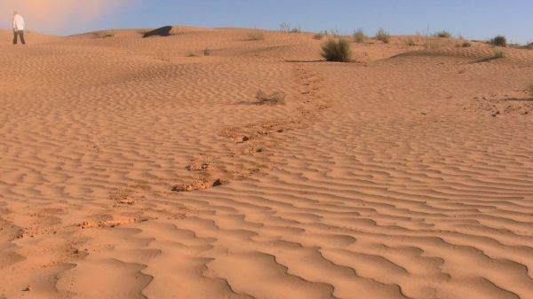 Man  sahara  desert video