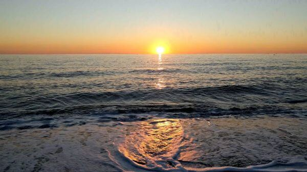 Marine  beach  coastline video