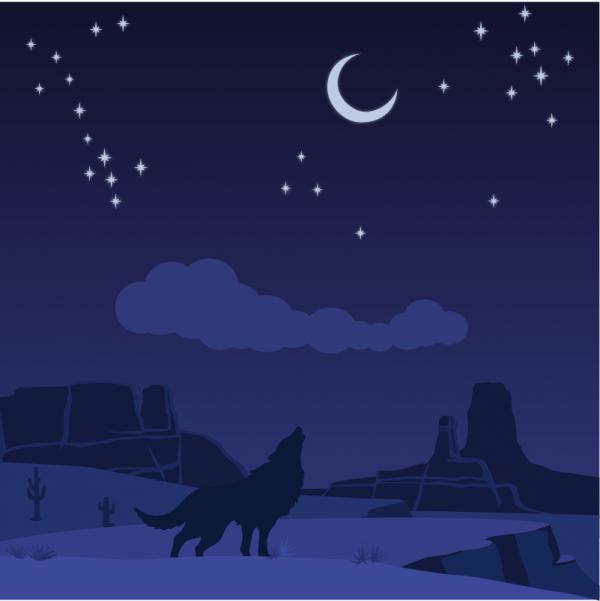 Desert wolf vector