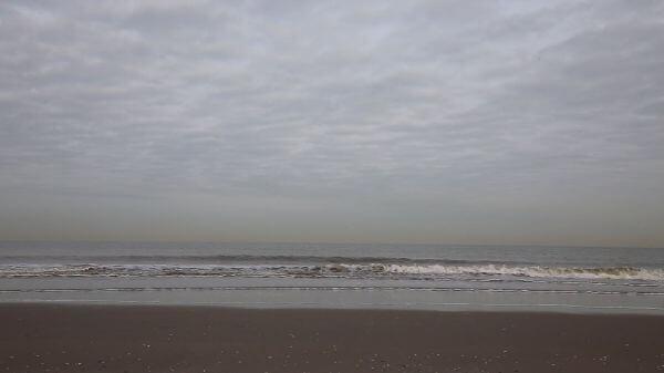 Sea  beach  coast video