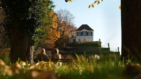 Autumn  baroque castle seußlitz  golden autumn video