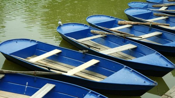 Rowing boats  water  blue video