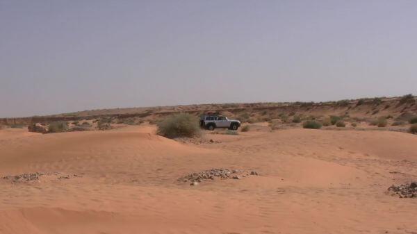 Sahara  dune  sand video