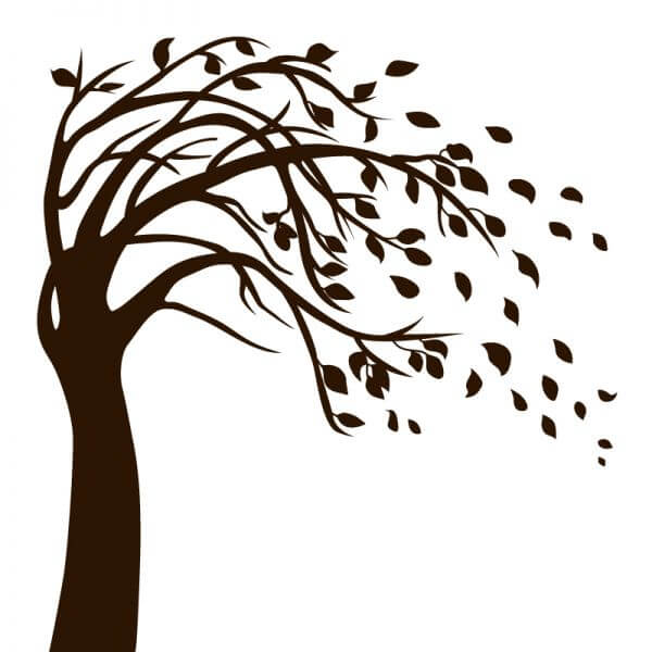 Isolated Black Tree vector