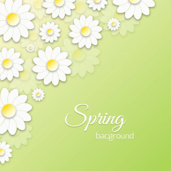 Spring Floral 3D Illustration vector