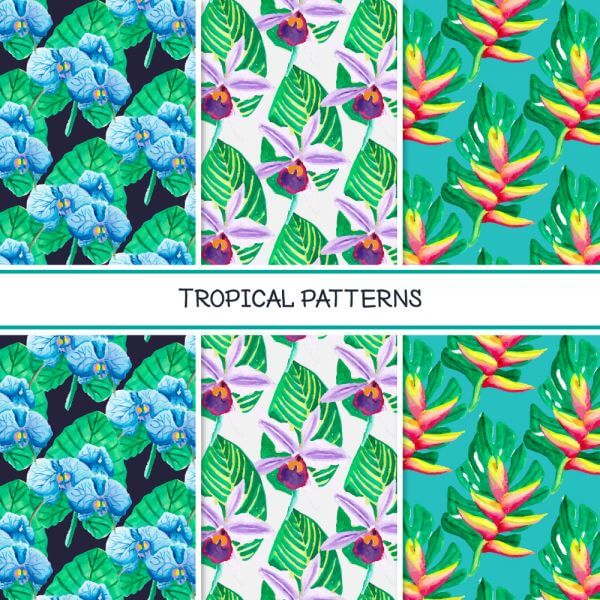 Tropical summer pattern collection vector