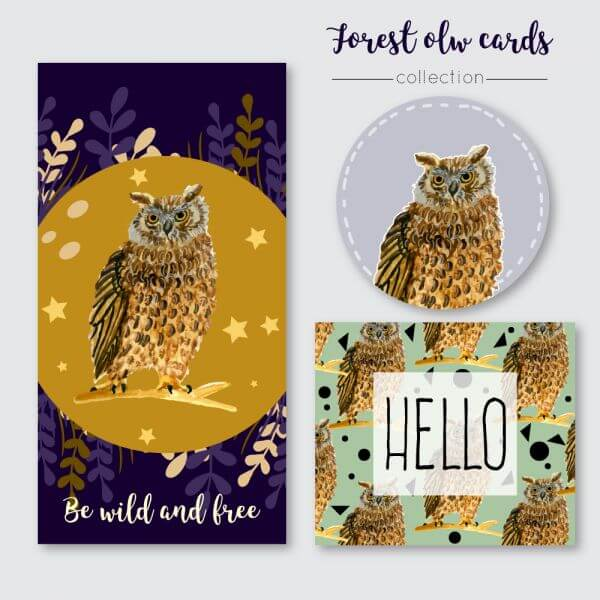 Owl summer cards vector