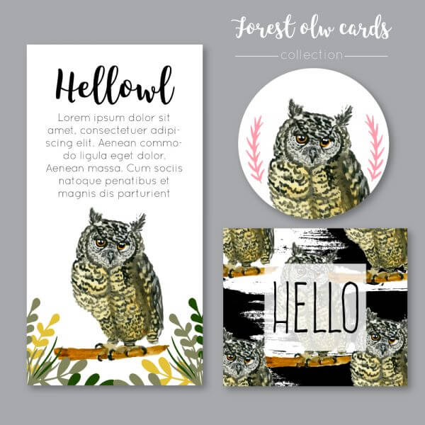 Watercolor owl collection or cards vector