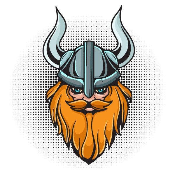 Cartoon viking head with helmet vector