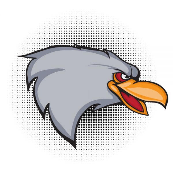 Cartoon vector eagle head  vector