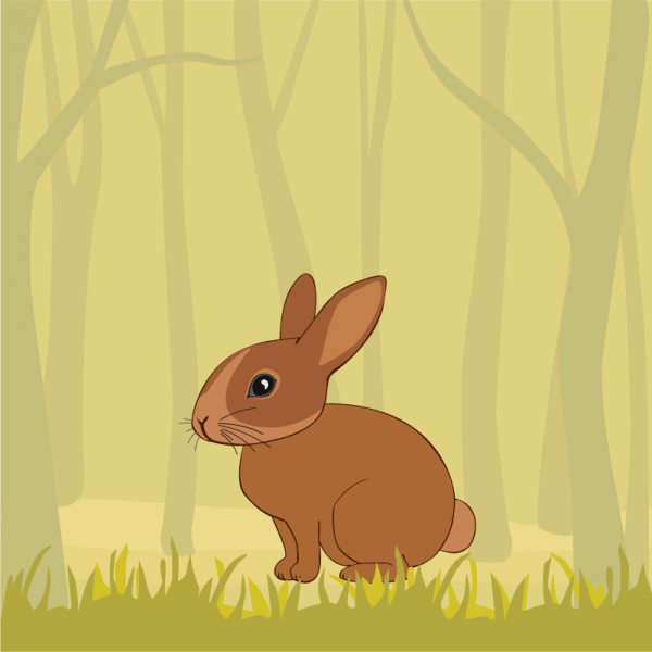 Cute Rabbit In the Forest vector