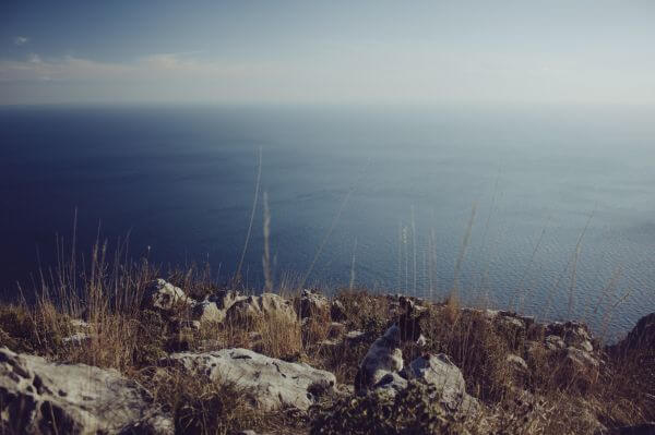 Photo by Pasquale Vitiello photo