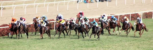 Horse Racing Derby Running photo
