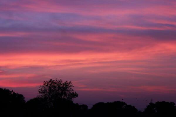 Pink Sky Evening photo