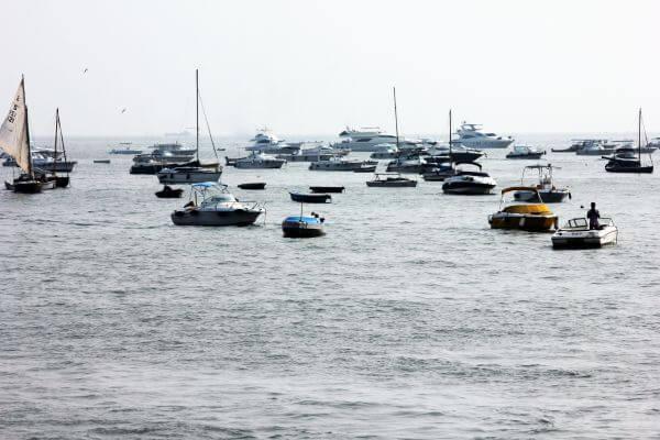 Sea Group Of Yachts Sail Boats photo