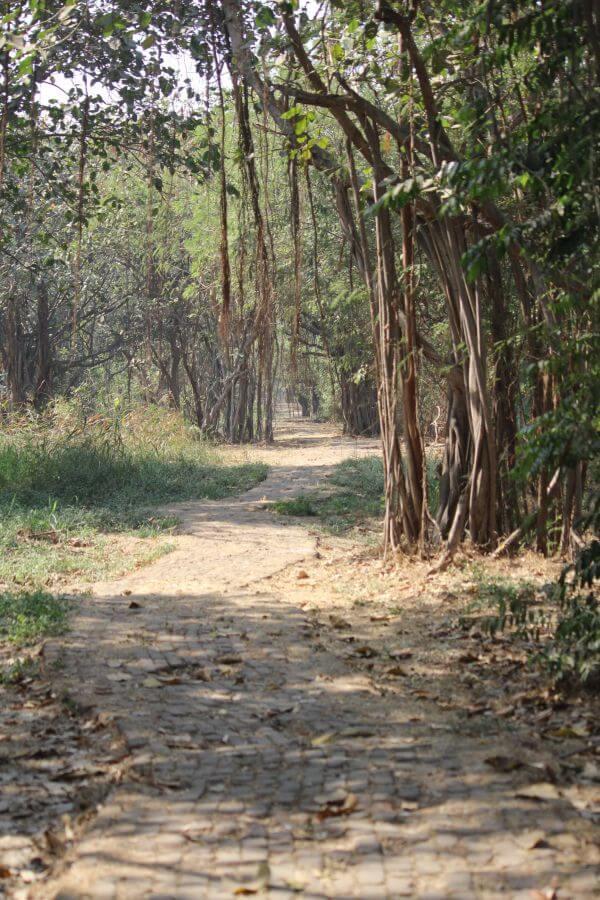Garden Road photo