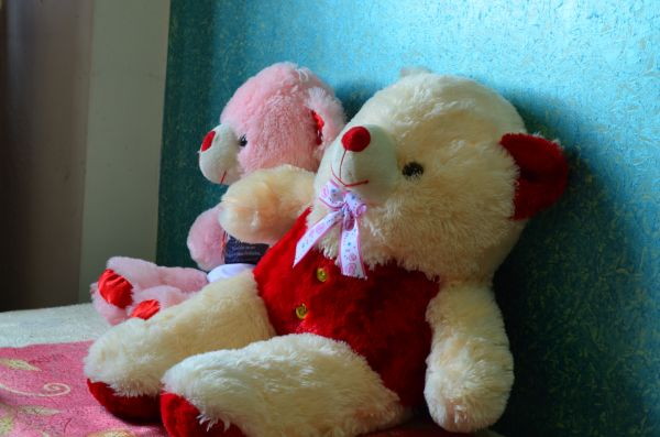 Love Couple Teddy Bears photo