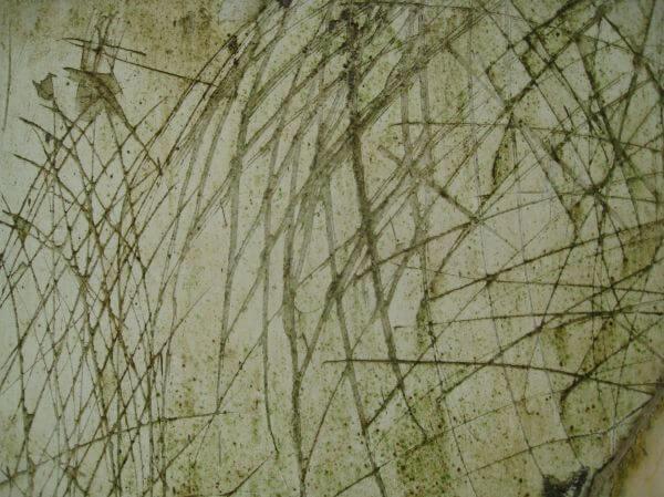 Concrete Texture photo