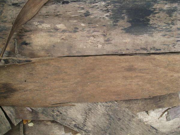 Old Wood Planks photo