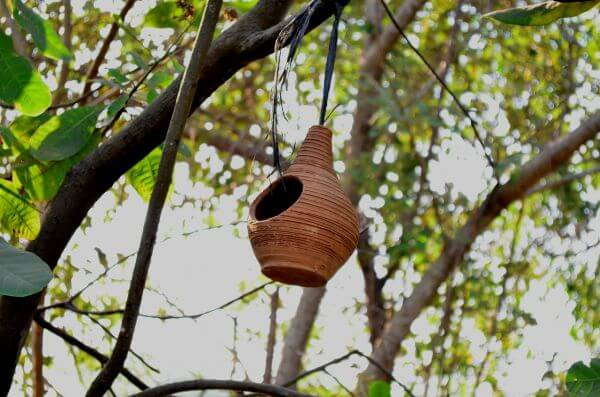 Hanging Bird House photo